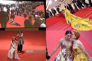 Không chỉ mặc sốc, loạt sao bày trò lố để được nhớ tên tại Cannes