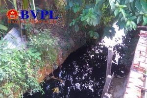 Đà Nẵng: Ô nhiễm môi trường nghiêm trọng, cử tri và người dân bức xúc