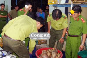 Thông tin thêm về vụ 'Đánh sập đường dây mua bán động vật hoang dã quy mô lớn'