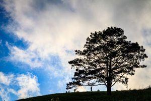 Tà Năng - Phan Dũng: Cung đường trekking đẹp nhưng đầy rẫy những hiểm nguy