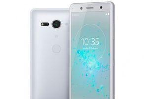 Smartphone màn hình 5 inch mạnh nhất thế giới chuẩn bị lên kệ tại Việt Nam