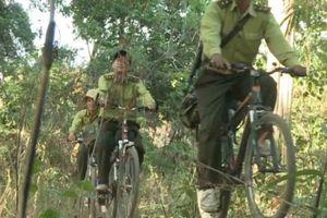 Chùm ảnh: Những hình ảnh ít biết về kiểm lâm Việt Nam
