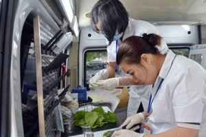 Hà Nội: 'Khắc tinh' của thực phẩm bẩn sẽ thường xuyên đi 'tuần tra'