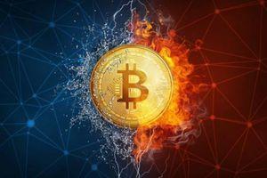 Giá Bitcoin hôm nay 21/5/2018: Quanh mốc 8.000 USD trong ngày đầu tuần