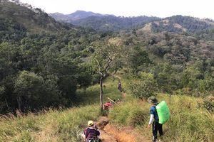 Tìm thấy thi thể 'phượt thủ' mất tích ở rừng Bình Thuận