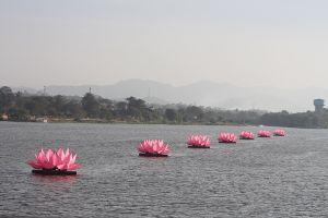 Hạ thủy 7 bông sen 'khổng lồ' trên sông Hương