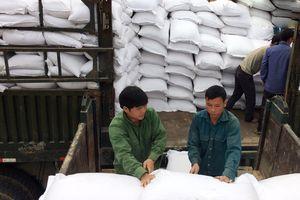 Đà Nẵng tiếp nhận 12 tấn gạo hỗ trợ từ tỉnh Savanakhet