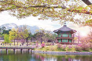 Đón hè cực chất trên xứ Hàn