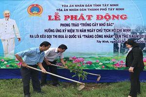 TAND thành phố Tây Ninh phát động phong trào 'Trồng cây nhớ Bác'