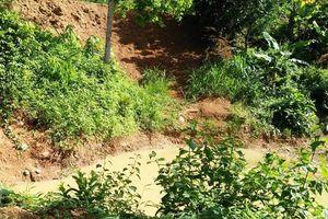 Hai chị em ở Nghệ An tử vong thương tâm khi đi bắt nhái