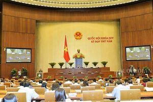 Ủy ban quản lý Cạnh tranh Quốc gia có nên trực thuộc Bộ Công thương?