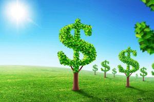 Kinh tế xanh tạo 24 triệu việc làm mới