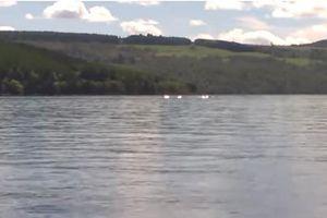 Học sinh 8 tuổi chụp được quái vật hồ Loch Ness?