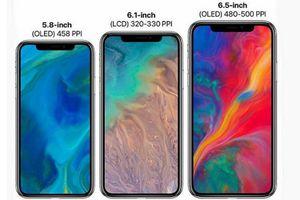 Rò rỉ hình ảnh chứng minh iPhone 9 sẽ có màn hình 6,1 inch