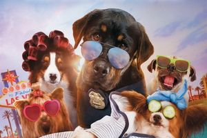 Cười vỡ bụng với trailer mới của các chú cún cưng trong Show Dogs
