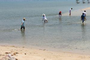Sốt đất Bắc Vân Phong: Những chuyện nóng bỏng ở Điệp Sơn