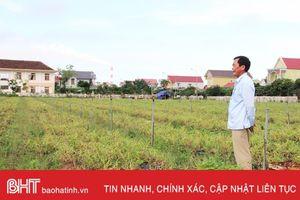 Liên kết sản xuất nông nghiệp ở Hà Tĩnh (bài 1): 'Ăn xổi ở thì'!