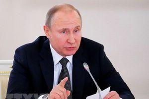 Tổng thống Nga Vladimir Putin đối thoại toàn dân vào ngày 7/6