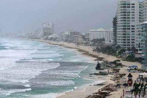 Hàng nghìn người Mỹ phải sơ tán tránh cơn bão Alberto