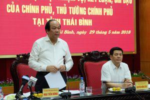 Tổ công tác của Thủ tướng: Thúc đẩy mô hình tích tụ đất đai ở Thái Bình