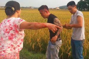 Côn đồ mang hung khí đòi 'bảo kê' thu tiền... gặt lúa