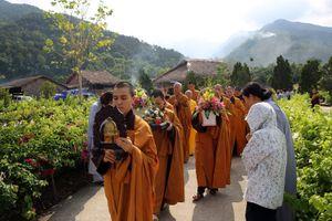 Lễ mừng Phật Đản tại bảo tháp Mandala Tây Thiên