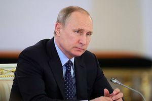 Tổng thống Putin chuẩn bị đối thoại trực tuyến với người dân