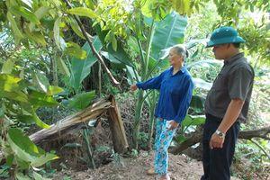 Phú Cường thấp thỏm trước mùa mưa bão