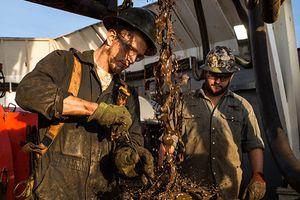 Sản lượng tăng kéo giá dầu Mỹ giảm