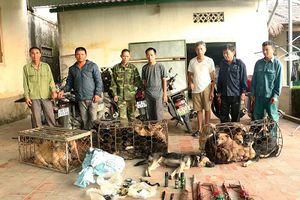 Hà Tĩnh: Triệt xóa đường dây trộm chó chuyên nghiệp