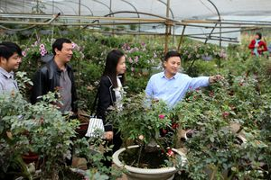 Huyện Mê Linh sau 10 năm về Hà Nội: Vươn mình mạnh mẽ
