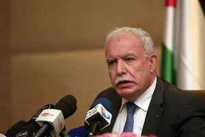 Palestine chỉ trích Mỹ 'chống lưng' cho Israel