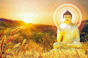 Một số điểm tương đồng giữa tư tưởng Phật giáo và vật lý hiện đại