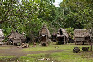 Kỳ lạ hòn đảo nơi phụ nữ cứ đến mùa thu hoạch là đi săn đàn ông