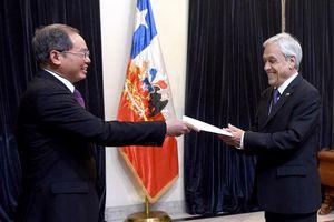 Chile muốn mở rộng quan hệ kinh tế và thương mại với Việt Nam