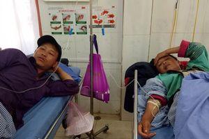 9 người trong gia đình nhập viện vì ăn phải nấm độc