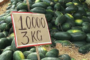 Kế sách để mở rộng thị trường nông sản