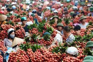 Công nghệ sẽ 'chắp cánh' cho nông sản Việt vươn ra thế giới