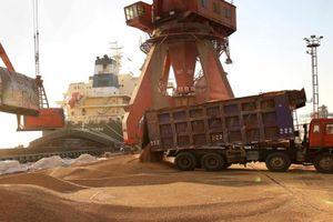 World Bank: 'Rào cản thương mại có thể đưa thế giới quay lại thời kỳ khủng hoảng kinh tế'
