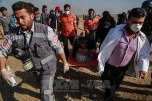 Kêu gọi quốc tế ngăn chặn những vi phạm của Israel đối với người Palestine
