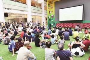 44 năm World Cup trên truyền hình Việt Nam