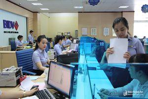 BIDV Nghệ An: Tiên phong trong phát triển dịch vụ phục vụ khách hàng