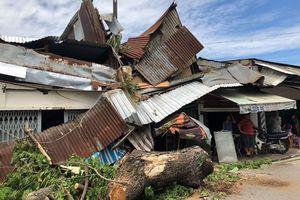 Hiện trường cây cổ thụ 'khủng' đè sập nhà dân ở TP HCM