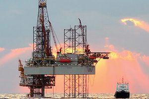 Ngóng động thái từ OPEC, giá dầu Mỹ giảm 3 tuần liên tục
