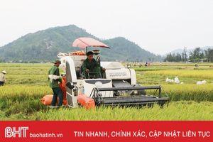 Nông nghiệp Hà Tĩnh với cuộc cách mạng lịch sử