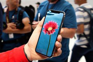 iPhone OLED có thể được phát hành trước phiên bản LCD