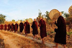 Một sáng ở thiền viện Maha Vihara Forest