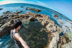 #Justgo: 'Nhắm mắt thấy mùa hè' tại thiên đường du lịch đảo Lý Sơn