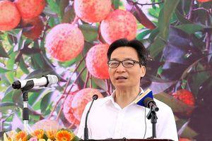 Phó Thủ tướng Vũ Đức Đam dự ngày hội vải thiều Thanh Hà 2018