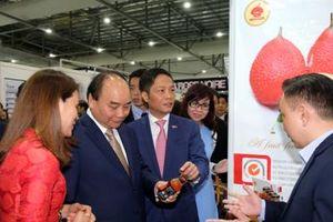 Thủ tướng quan tâm hỗ trợ phát triển Thương hiệu Việt